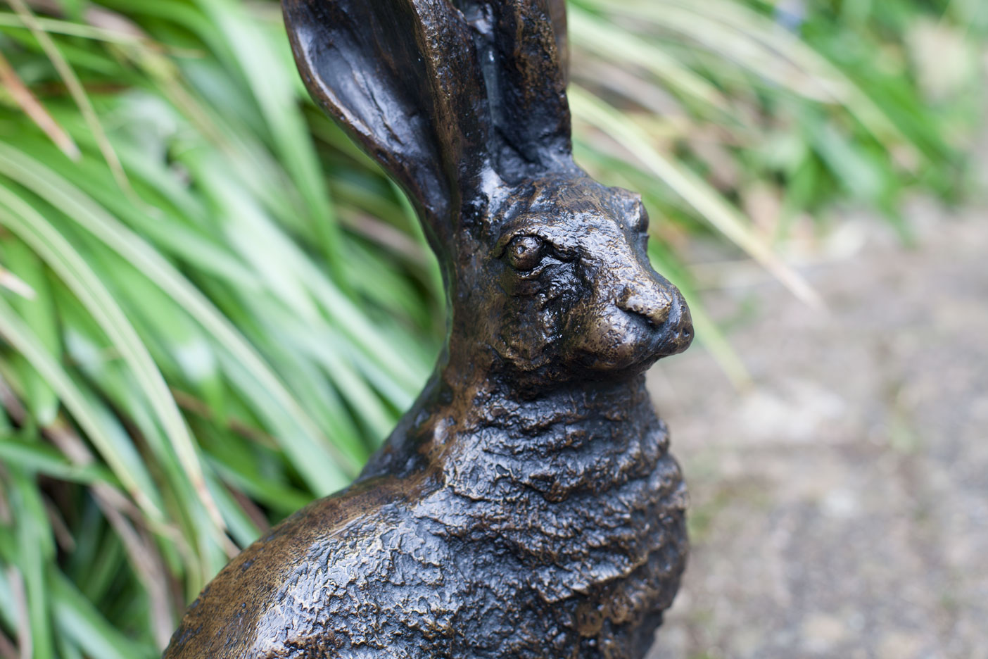Bronze hare face