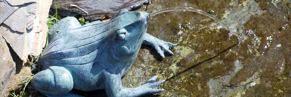 frog-fountain-banner